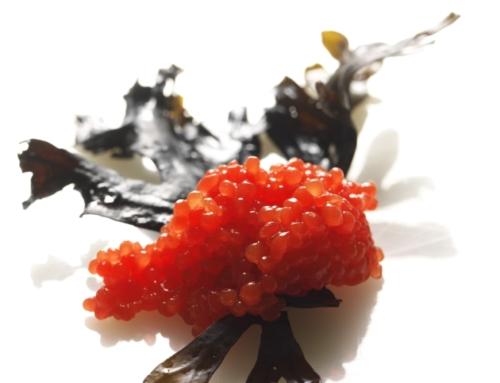Seaweed caviar: A plant-based food