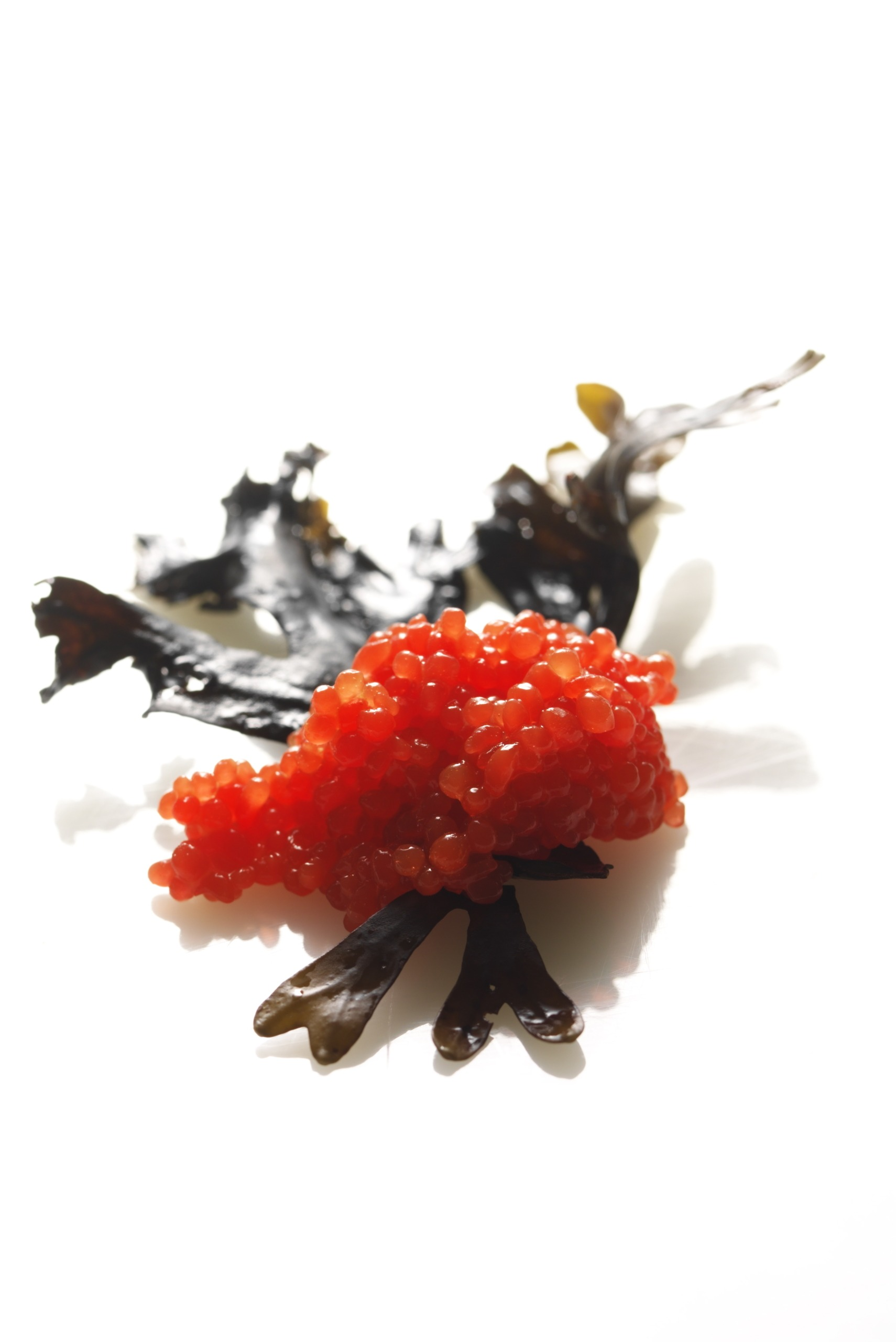 Red cavi-art - seaweed cavair - vegan red caviar